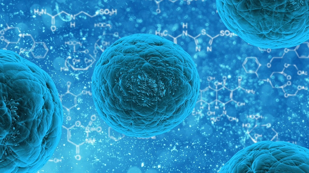 Stem cell medicinal products